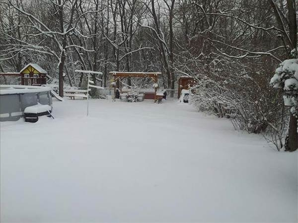 "January 29, 2014: An Action News viewer captured this scene: ""My backyard covered with snow ? Vineland, N.J."""