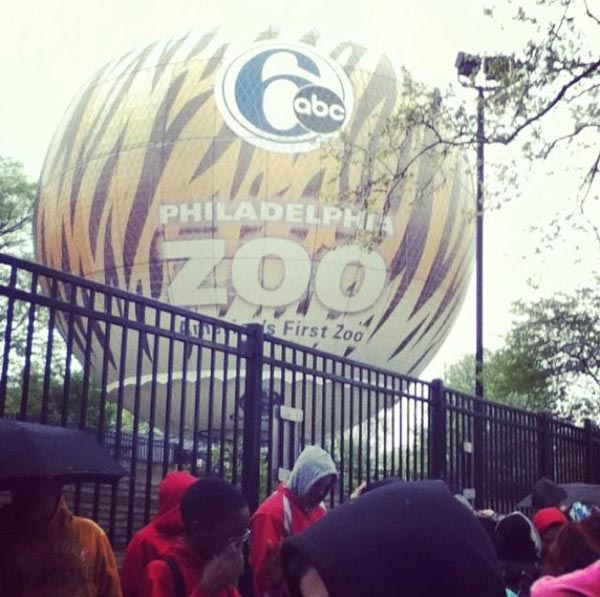#6abczooballon it's gone - Aaron Ryan Cooperman