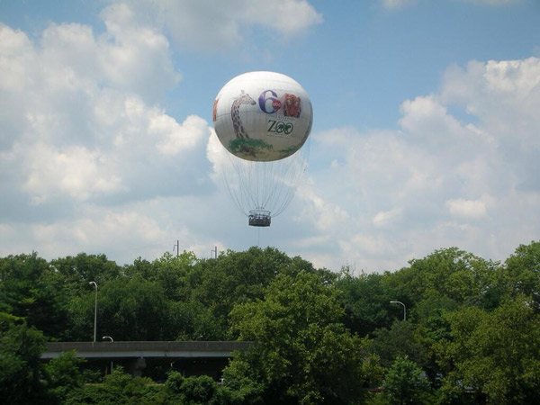 #6abczooballoon Shot summer 2006.  - David Myers