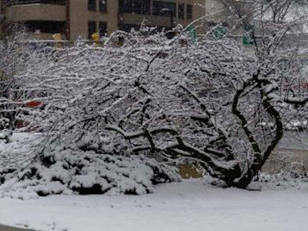 Kirsten Klein via Facebook - Snow at Penn State!