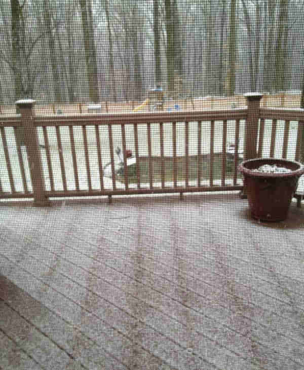 From Karen S @karss74  via Twitter -  Snowing in Exton!