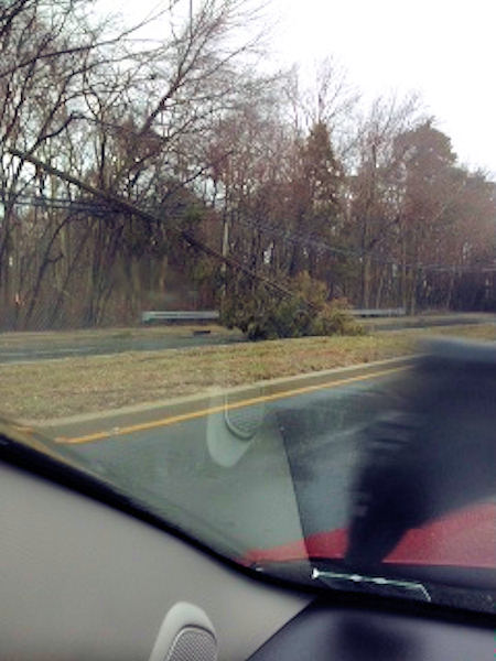March 6, 2013: An Action News viewer took this picture of a tree down along Fischer Boulevard in Toms River, NJ.