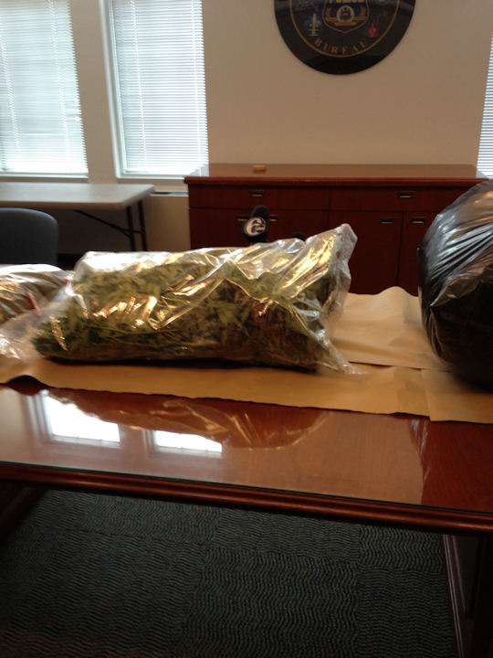 Philadelphia police made a major pot bust in Olney worth almost $2-million on Thursday, March 7, 2013.