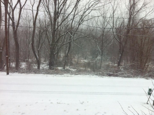 "Action News viewer Cindy Woodring tweeted this photo of ""Snow in Laurys Station, PA "" on March 18, 2013."