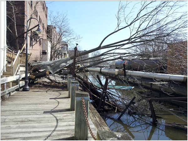 A tree fell across the Manayunk Towpath Monday afternoon, March 19, 2012, damaging a section of the walkway and hitting a freight train. It happened at 2:00 p.m. just off Main Street near Cotton Street.  No one was injured.    <span class=meta>(Action News Viewer Steven Hass)</span>