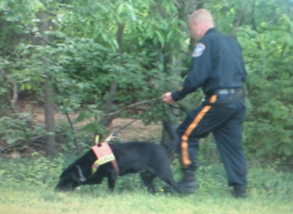 Search dogs were used on Friday, May 13th as police continued the effort to find Sarah Townsend.