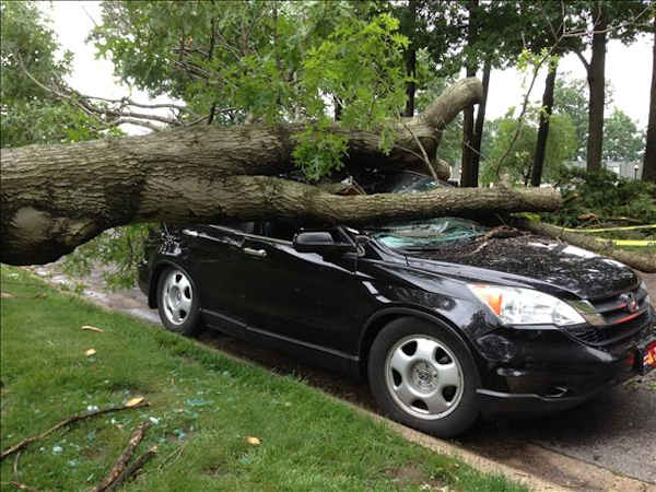 "<div class=""meta ""><span class=""caption-text "">Storm damage from Newark, Delaware. </span></div>"