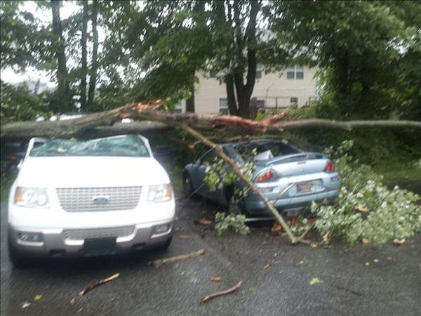 Storm damage from Newark, Delaware.