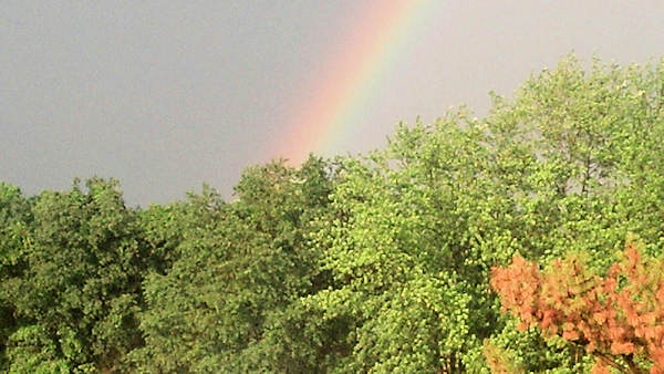 "<div class=""meta ""><span class=""caption-text "">Friday June 14, 2013: An Action News viewer sent us this picture of the rainbow from Wrightstown, N.J.</span></div>"
