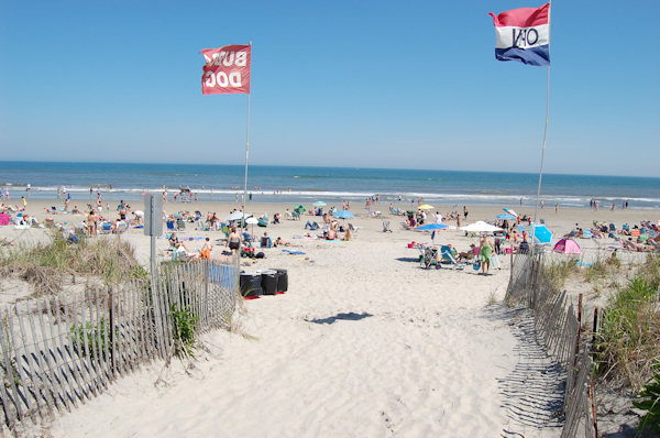 "<div class=""meta ""><span class=""caption-text "">Submitted by:  Paul Caption: Sea Isle City - Memorial Day Weekend 2010 - 59th & the Beach.   CLICK HERE to submit your Shoretographs!</span></div>"