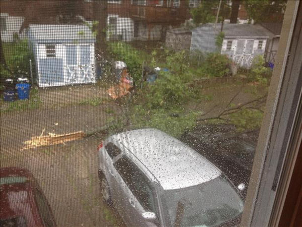 "<div class=""meta image-caption""><div class=""origin-logo origin-image ""><span></span></div><span class=""caption-text"">Branches down after storm hits Darby Township, Delaware County on Monday, June 24, 2013 (Viewer Photo)</span></div>"