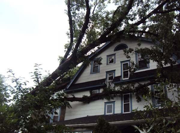 Submitted by:Allison Callahan  Caption:Storm damage in Lansdowne   RELATED: CLICK HERE for more viewer submitted photos: