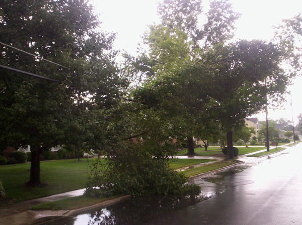 Submitted by:Carlos   Caption:Storm Damage in North Packard Street Hammonton Atlantic County NJ.   RELATED: CLICK HERE for more viewer submitted photos