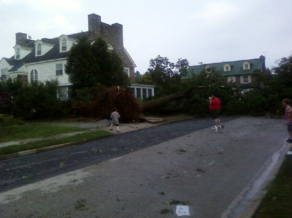 Submitted by: Lewen  Caption:Giant tree barely misses house in Drexel Hill   RELATED: CLICK HERE for more viewer submitted photos