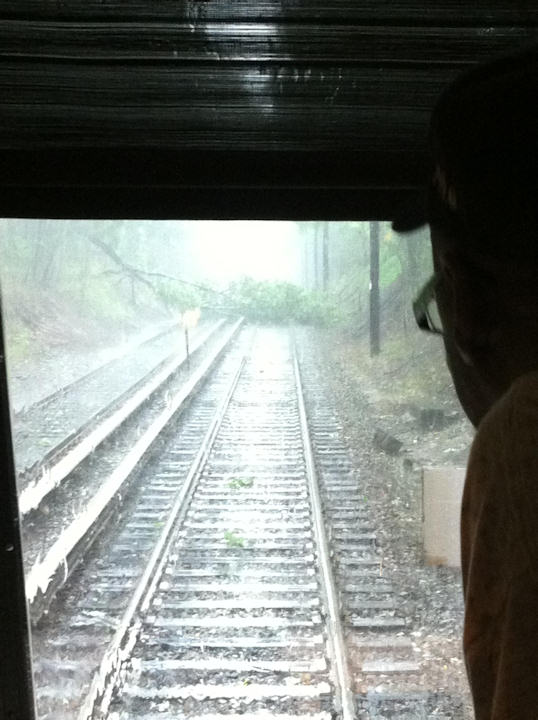 An Action News viewer took this photo of a tree down at the SEPTA Parkview Station on June 25, 2013. <span class=meta>(Viewer Photo)</span>