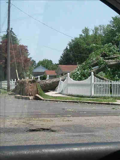 "<div class=""meta ""><span class=""caption-text "">An Action News viewer sent in this photo downed trees and power lines in New Jersey. Send us your photos via See It, Shoot It, Send It!</span></div>"
