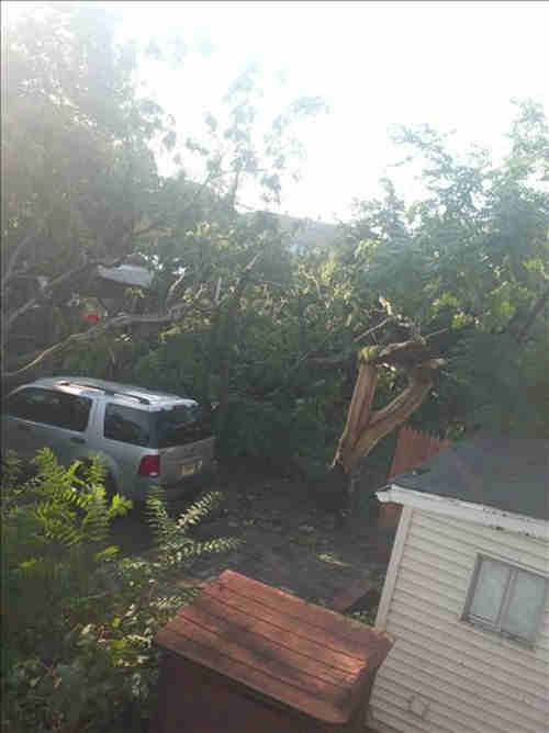 "<div class=""meta ""><span class=""caption-text "">An Action News viewer sent in this photo of storm damage in Millville, New Jersey. </span></div>"