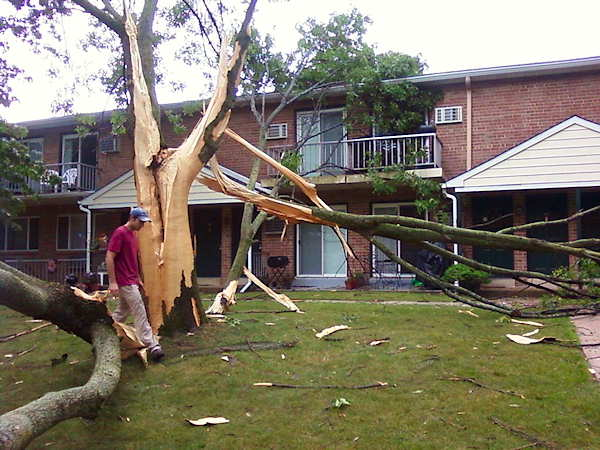 "<div class=""meta ""><span class=""caption-text "">A lightning bolt exploded a tree in Phoenixville Friday afternoon.</span></div>"
