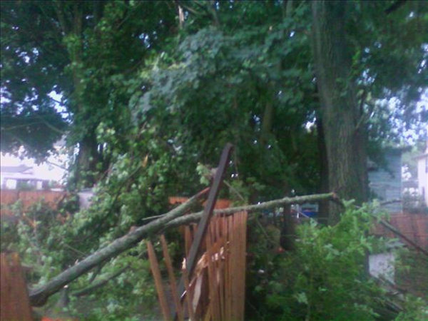 "Action News viewer Maggie Mae said ""These are pictures taken when a tree was blown down in our backyard tonight during the storm. Thank God no one was hurt and nothing more than the fence was damaged."""