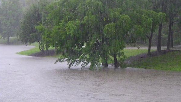 An Action News viewer sent in this photo of heavy rain in their area.