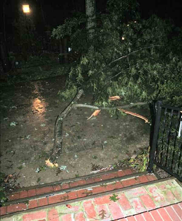 "<div class=""meta ""><span class=""caption-text "">From our front steps. As Adam was warning us of the impending tornado in the Pomona section of Galloway Township, N.J. we heard a very loud crack and then a loud bang. We went to our front steps and there was this large limb that landed inches away from our front porch. It missed our porch roof overhang.    Viewer photo of damage from Hurricane Irene submitted through sendit.6abc.com</span></div>"