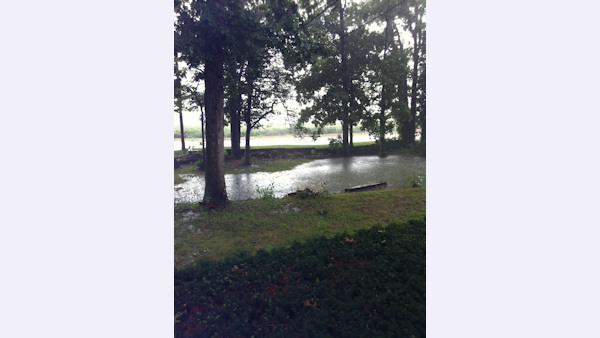 An Action News viewer sent in this photo of a backyard in Bridgeton, NJ.