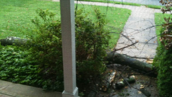 "An Action News viewer sent in this photo saying, ""Part of our tree fell and damaged our front gutter and downspout here in Cheltenham."""