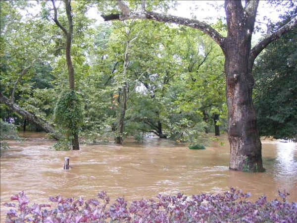 Viewer photo: Neshaminy Creek overflow near Bellevue Ave. in Hulmeville, PA.