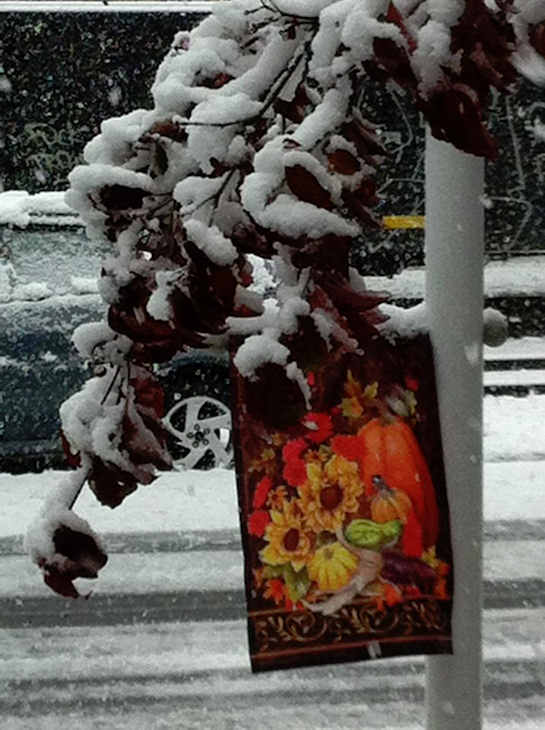 Sandy Hauck Schaeffer - Snow-laden branches in October in Kutztown Pennsylvania  Submitted on the Action News Facebook page