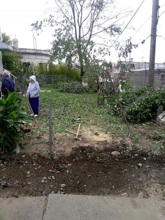 "<div class=""meta image-caption""><div class=""origin-logo origin-image ""><span></span></div><span class=""caption-text"">Adam Joseph: ""FINALLY...the tree is gone. It took 6 hours to cut it all up. Still need to haul some of the brush away. Even got most of the roots out. Talk about a workout!""</span></div>"