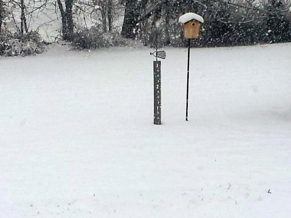 November 27, 2012: An Action News viewer sent this photo from Hilltown. <span class=meta>(Facebook&#47; Susie Lundy Petrosky)</span>
