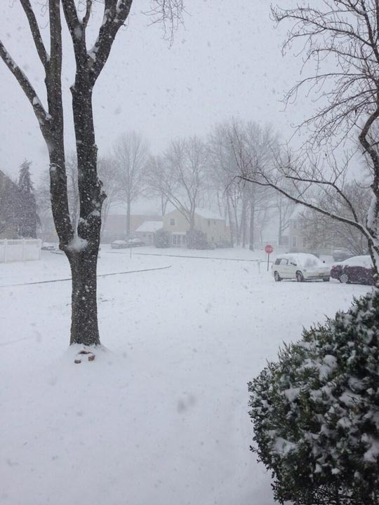 Photo from viewer Lauren Rae in Deptford, New Jersey