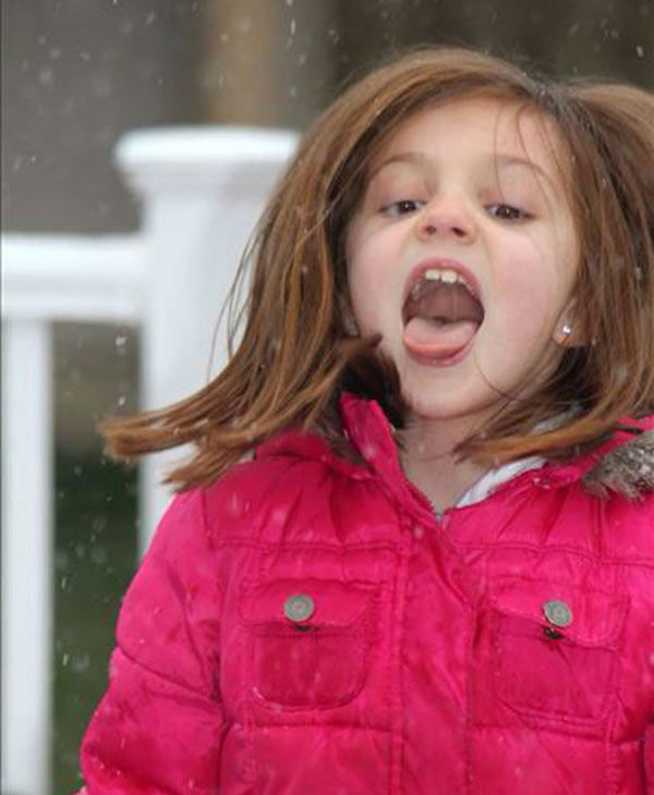 "<div class=""meta ""><span class=""caption-text "">Maddie clearly has a taste for snow! (submitted photo)</span></div>"