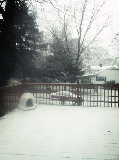 Action News viewer Sarah Salvitti tweeted us this photo from Aston, Pa. <span class=meta>(Sarah Salvitti)</span>