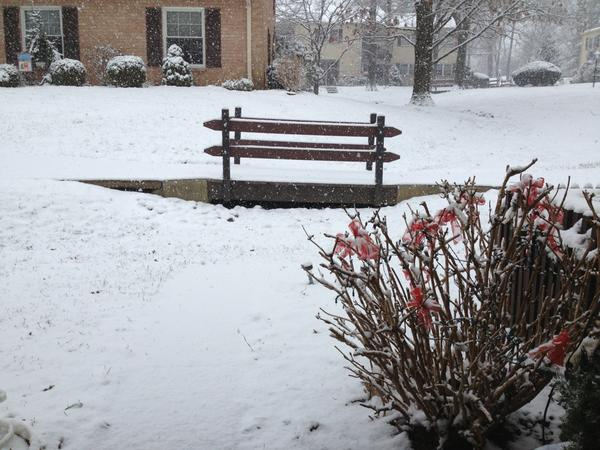 Action News viewer Jackie Caza tweeted us this photo from Devon, Pa. <span class=meta>(Jackie Caza)</span>