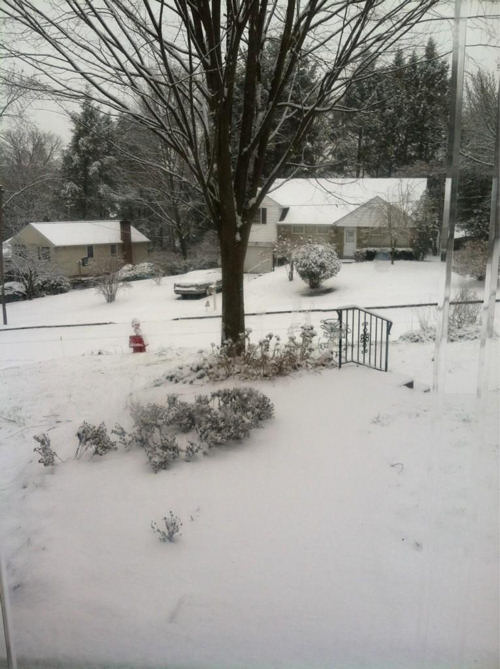 Viewer Jennifer Burns tweeted us this photo...