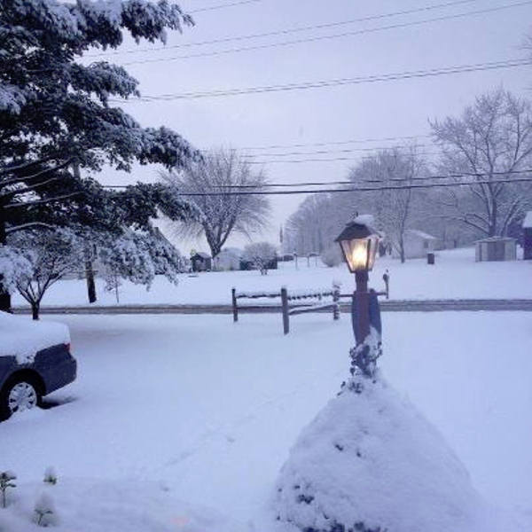 Chris Elise caught the snowfall in Limerick, Pa. <span class=meta>(Chris Elise)</span>