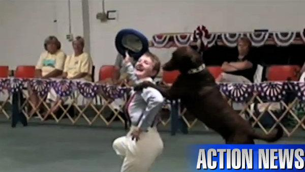 VIDEO: Dancing with... your dog