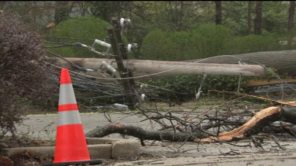 Fallen tree causes trouble in Montco