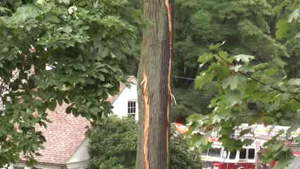 Lightning investigated in 2 house fires