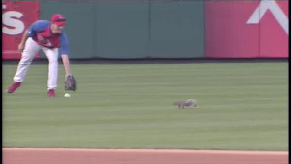 Rally squirrel makes appearance at CBP