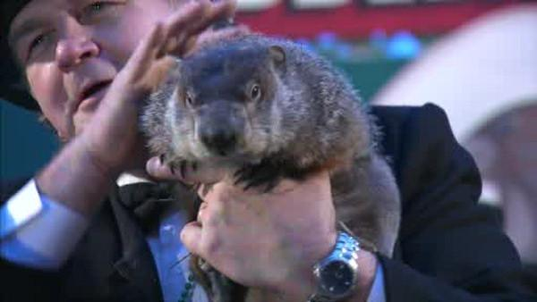 Pa. groundhog 'predicts' 6 more weeks of winter