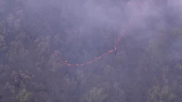 Berks Co. forest fire not yet contained