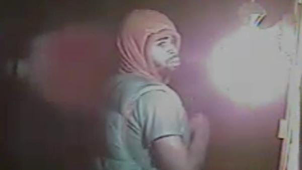 Person of interest sought in Delaware arson