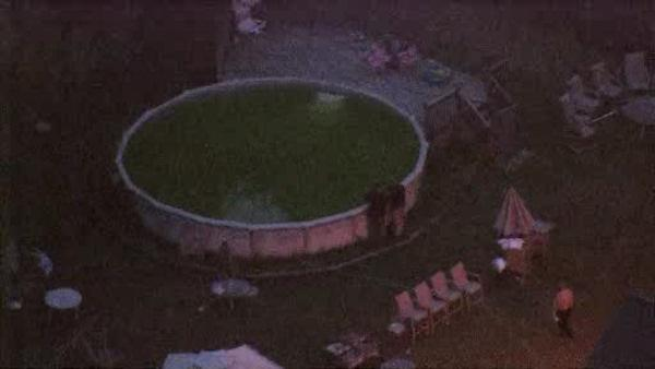 Young child pulled from NJ pool