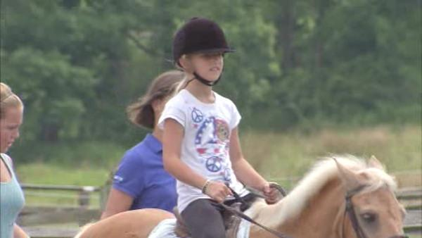 Local horse program provides therapy to cancer patients