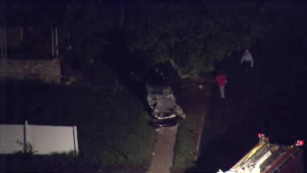 Driver slams into tree in N.E. Phila.