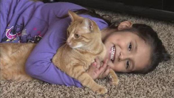 Sandy evacuees reunited with pets
