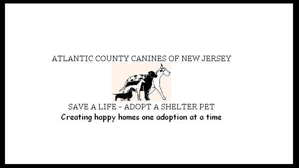 Shelter Me: Atlantic County Canines of New Jersey