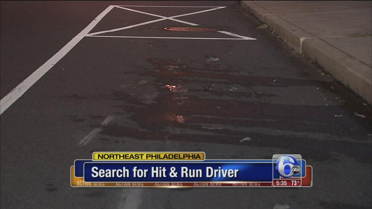 Search for NE Phila. hit-and-run driver